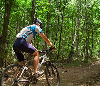 downhill, cross country or leisure bike ride